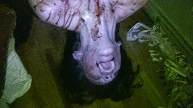 paranormal entity ending samantha 2009