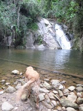 Pousada Encanto Bocaina - Sao Jose Barreiro (SP) 2012 (84)