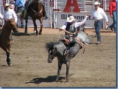 9450 Alberta Calgary - Calgary Stampede 100th Anniversary - Stampede Grandstand - Calgary Stampede Saddle Bronc Championship