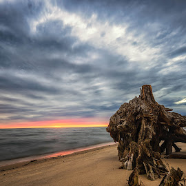Clouds Over the Gulf by Stephen Marshall - Landscapes Cloud Formations ( clouds, sand, driftwood, sunset, gulf, long exposure, ocean, beach )
