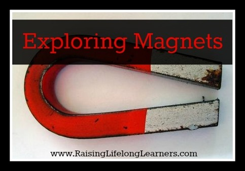 Exploring Magnets via Raising Lifelong Learners