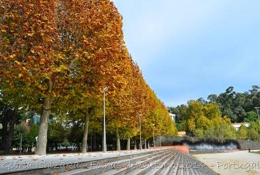 Glória Ishizaka - Folhas de Outono 6