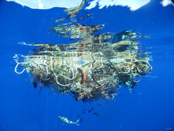7 - A ilha de lixo