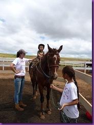 horse rescue 039