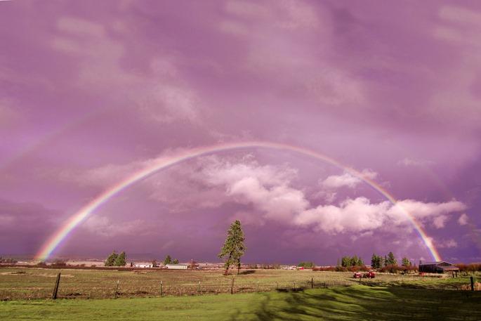 Rainbow4-resize