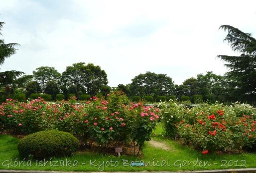 Glória Ishizaka -   Kyoto Botanical Garden 2012 - 121