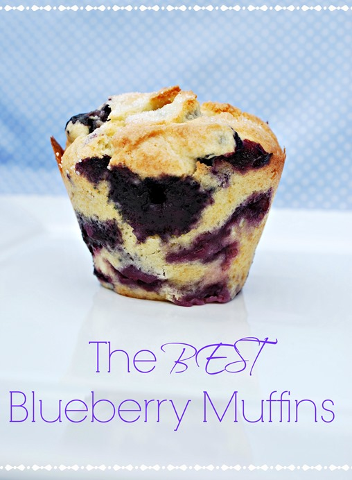 best blue berry muffin recipe