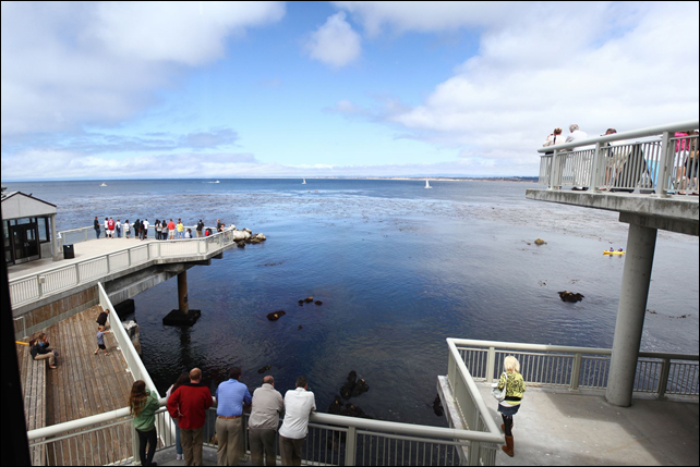 A view from the Monterey Bay Aquarium, where in 2010 a climate-change exhibit outraged dairy farmers by featuring a cow wearing a gas mask. (Cows are a source of methane, a greenhouse gas.) The mask was removed. Photo: Ethan Magoc / Post-Gazette