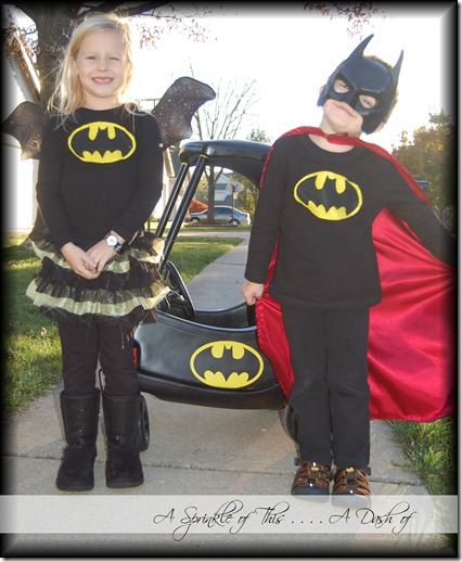 Batman and Batgirl and the Batmobile! {A Sprinkle of This . . . . A Dash of That}