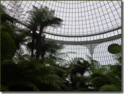 glasgow botanics kibble palace