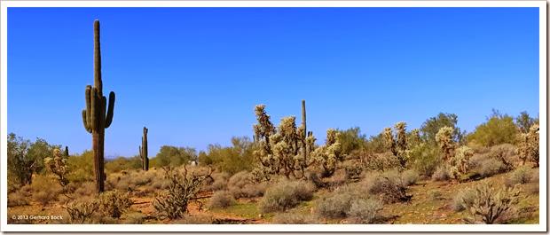 131205_TaliesinWest_desert_pano