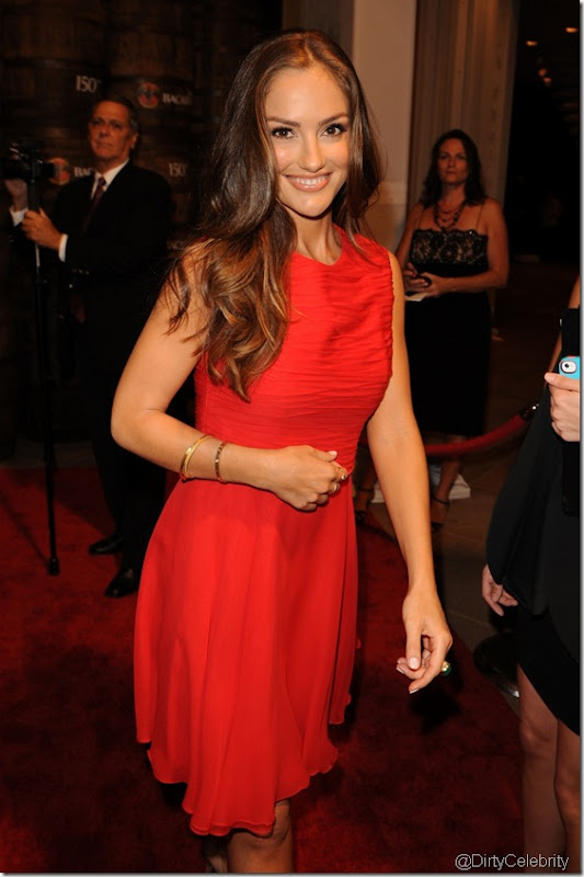 minka-kelly-dress-hot-5
