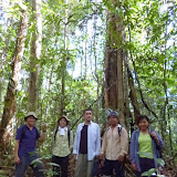 写真4:Rh.AyingのPulau Kerapa(植生調査のプロット候補地)