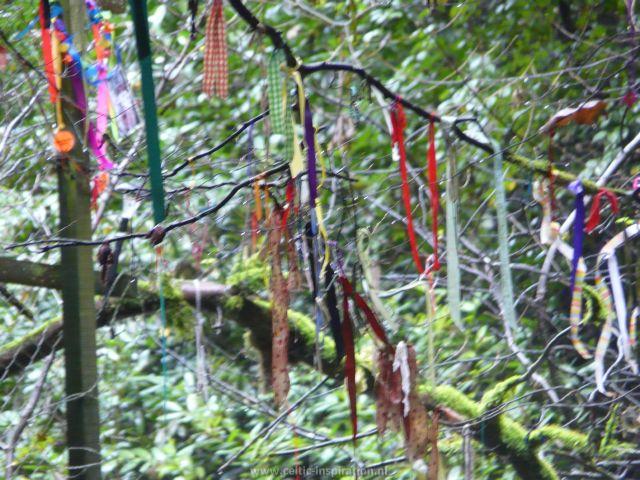 spirituele-reis-dartmoor-engeland-69.JPG