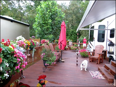 Eileen, dogs and flowers on deck