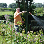 watering the plants in Santpoort-Noord, Noord Holland, Netherlands