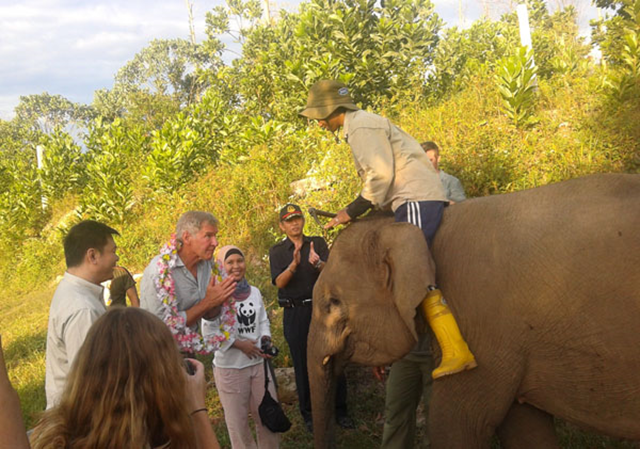 Harrison Ford in Tesso Nilo National Park, Sumatra, in September 2013. Ford sparked a complaint from Indonesia's top forest official after the actor asked a series of tough questions about ongoing rainforest destruction in the Southeast Asian nation, reports Indonesian state media. Photo: Zamzami / Mongabay-Indonesia
