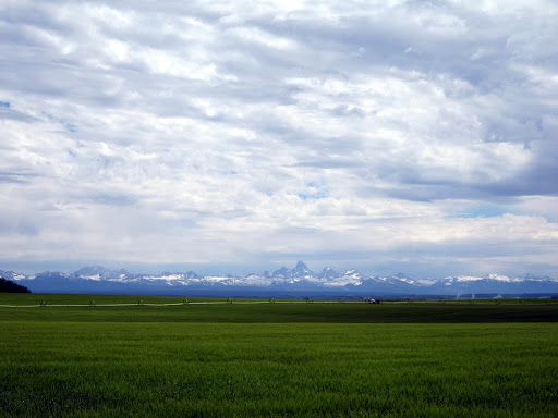 Idaho fields and the Tetons