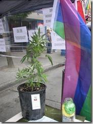 Pride 2011 063