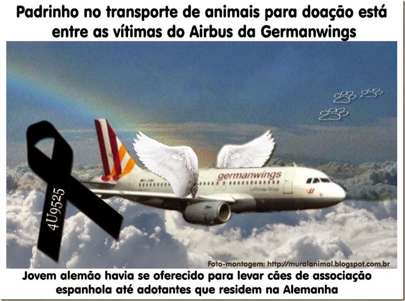 padrinho_animais