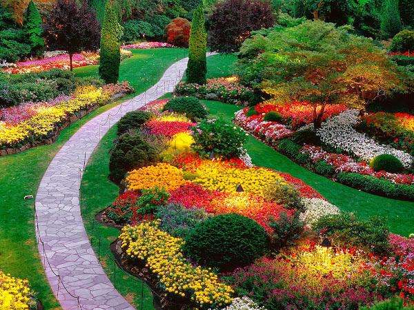 Garden 8 Pictures Of Gardens