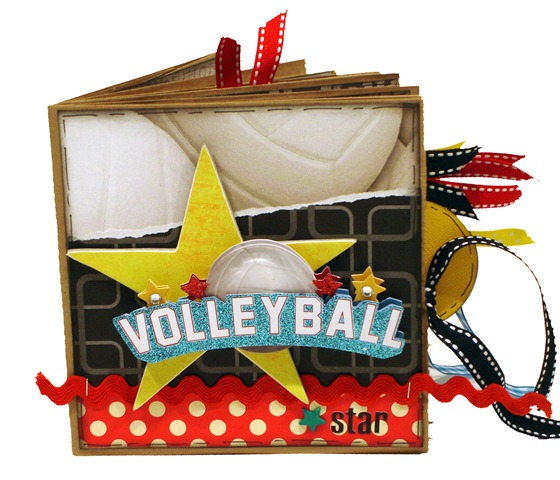 Volleyball Star 1