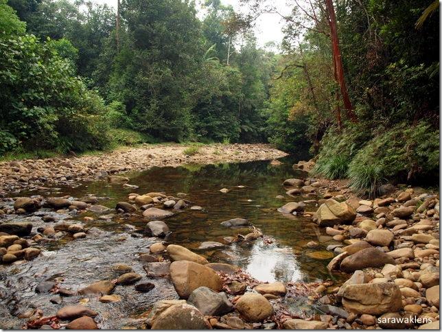 cool_waters_river_sarawak
