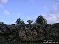 Góra Czcibora (54,5 m.n.p.m.)