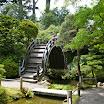 Bridge at Japanese Tea Garden