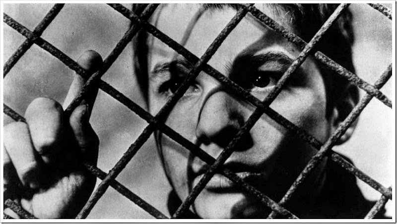 Copia di 400-blows-feature-image