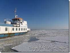 Færgen Kragenæs-Femø