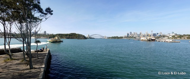 Sydney Harbour Bridge from Birchgrove