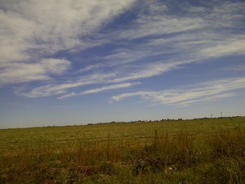 IMG-20121020-09924