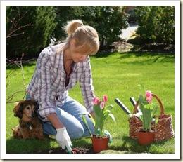 Jardin-para-primavera
