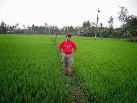 05. Orezarie in Vietnam.JPG