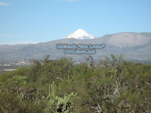 San-Lucas-Palmillas-Tlacotepec.JPG