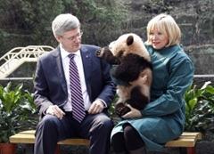 Harper and Panda