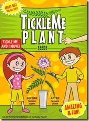 Tickle Me Plant