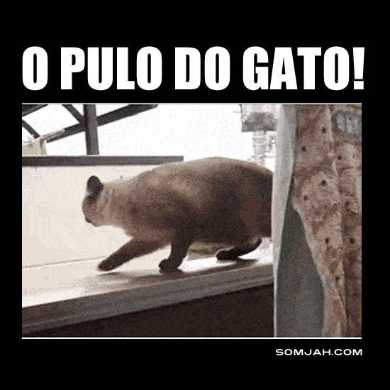 PULA GATINHO