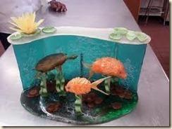 sugar aquarium