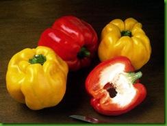 Pepper Peperone Quadrato d'Asti