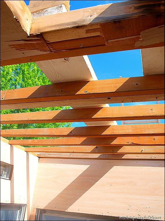 Open Roof 3