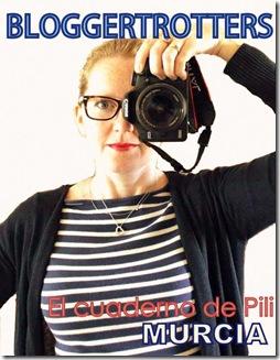 Foto cámara CuadernodePili2