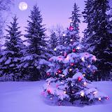 Navidad%2520Fondos%2520Wallpaper%2520%2520479.jpg