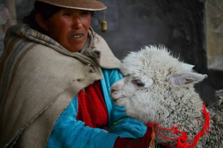 Imagini Peru: Colca Canyon