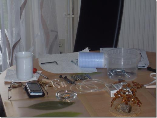 2011_08 Mein Kiwi kommt an (4)