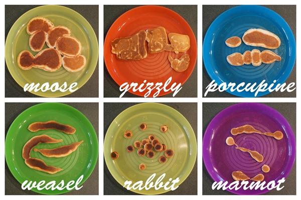 Aimal Poop Pancakes