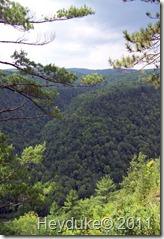 2011-08-08 Pennsylvania Grand Canyon 011