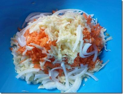 coleslaw (4)