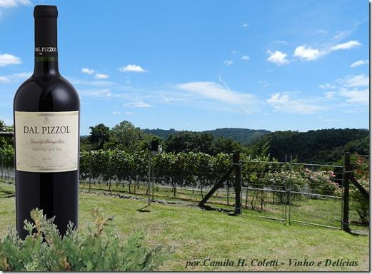 Vinho Dal Pizzol - www.vinhoedelicias.com.br